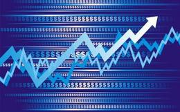 MHC tăng mạnh, Sotrans bán sạch hơn 9 triệu cổ phần, không còn là cổ đông lớn