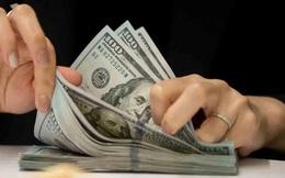 Mỹ: Nhận được tiền hỗ trợ Covid-19, chủ doanh nghiệp dùng 1,5 triệu USD để đầu tư chứng khoán và mua ô tô Tesla