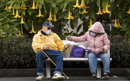 Tác động kinh tế của Covid-19: Người già hay người trẻ sẽ bị nghèo đi nhiều hơn?
