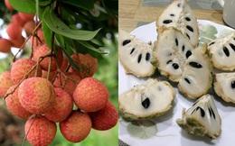 """7 loại quả là """"đặc sản"""" của mùa hè và những lưu ý cực quan trọng khi ăn"""