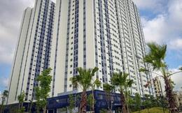 Dự án BT cải tạo chung cư cũ đổi lấy 99ha đất tại Hải Phòng, chủ đầu tư nói gì?