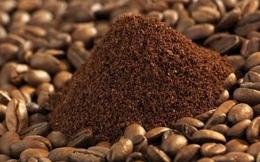 Xuất khẩu cà phê mang về hơn 1,3 tỷ USD trong 5 tháng đầu năm 2020