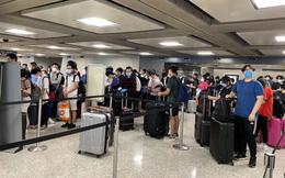 Thêm 346 người Việt Nam từ Mỹ về nước, được cách ly sau khi xuống Nội Bài