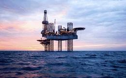 IEA nâng dự báo nhu cầu dầu mỏ thế giới năm 2020