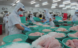 Xuất khẩu nông, lâm, thủy sản hướng tới 41 tỷ USD: Trông vào đâu?