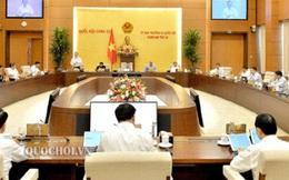 Sáng nay khai mạc phiên họp 46 Ủy ban Thường vụ Quốc hội