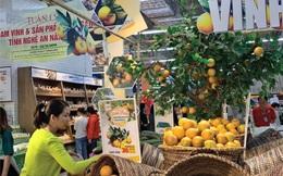 CEO Central Retail: Mở 6 trung tâm thương mại GO! Mall mới và chuyển 4 siêu thị Big C thành trung tâm thương mại tại Việt Nam