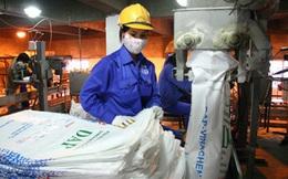 DAP – VINACHEM (DDV): Quý 2 báo lỗ 27 tỷ đồng