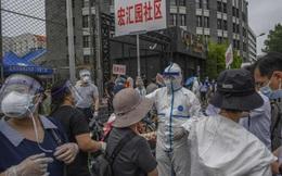 Nhiều nơi ở Trung Quốc phát hiện SARS-CoV-2 trên bao bì tôm nhập khẩu