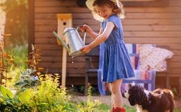 Hé lộ bí mật giúp người Hà Lan nuôi dạy thành công những đứa trẻ hạnh phúc, có điều còn đi ngược lại với suy nghĩ của cả thế giới