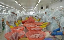 Xuất khẩu thủy sản tháng 6/2020 tiếp tục giảm 10%