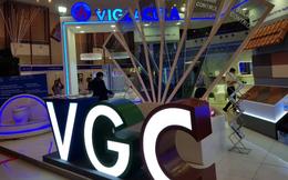Không đạt được mức giá kỳ vọng, QLQ Đầu tư Đỏ không thoái được vốn tại Viglacera và Gelex