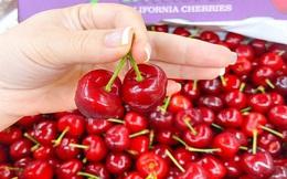 """Từ đắt đỏ xuống bình dân, cherry Mỹ hàng Vip đang giảm giá """"sập sàn"""" còn 299.000 đồng/kg"""