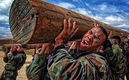 """3 nguyên tắc """"thay đổi bản thân, xoay chuyển cuộc sống"""" của các đặc vụ SEAL: Bạn phải học cách thoải mái khi khó khăn nhất, đừng từ chối bất kỳ cơ hội nào để đứng lên"""