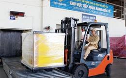 Noibai Cargo (NCT): Quý 2 lãi 45 tỷ đồng giảm 20% so với cùng kỳ