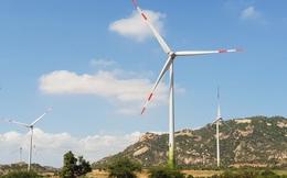 Nhà đầu tư lao đao vì giá điện gió