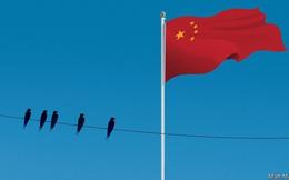 Chuyện chưa kể về những gia tộc gốc Hoa thống trị kinh tế Đông Nam Á