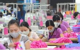 Khó khăn chồng chất khiến xuất khẩu dệt may sụt giảm mạnh