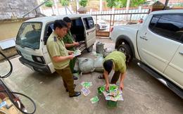 Ngăn chặn 6.500 túi hạt giống rau có dấu hiệu nhập lậu tại Lạng Sơn