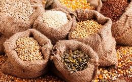 Mỹ cảnh báo về những hạt giống bí ẩn đáng ngờ từ Trung Quốc