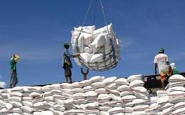 Nhiều mặt hàng nông lâm thủy sản xuất khẩu vượt 1 tỷ USD