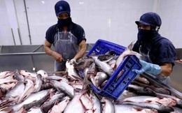 Thủy sản Cửu Long An Giang (ACL): Quý 2 lãi 4 tỷ đồng giảm 93% so với cùng kỳ