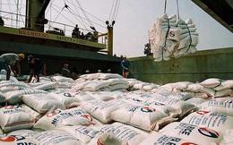 Gạo là nông sản duy nhất có kim ngạch xuất khẩu tăng trong 7 tháng đầu năm