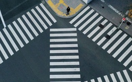 Bloomberg: Kinh tế toàn cầu suy thoái như đi thang máy xuống, nhưng hồi phục như thang bộ đi lên