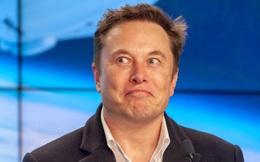 Đánh bật mọi nhà sản xuất ô tô lớn, vốn hóa của Tesla tăng thêm 14 tỷ USD mỗi ngày