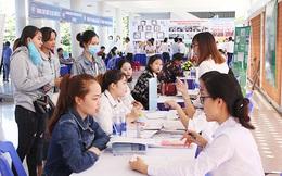 Đà Nẵng: Chưa DN nào tiếp cận được vốn vay không lãi suất để trả lương ngừng việc cho người lao động