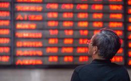 'Con bò' mới trên TTCK Trung Quốc sẽ trụ vững hay sớm sụp đổ?