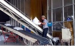 EVFTA làm tăng khả năng cạnh tranh về giá của hàng hóa Việt Nam