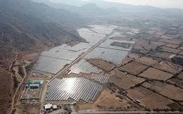 Licogi 16 (LCG): Năm 2020 sẽ ghi nhận lợi nhuận từ dự án Solar Farm Nhơn Hải, tập trung nguồn lực vào ngành điện