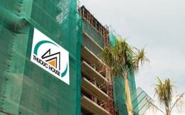 Thuduc House (TDH): Sắp phát hành gần 19 triệu cổ phiếu tỷ lệ 100:20