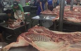 Giá thịt heo giảm, nhiều trại bán heo quá lứa