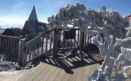 Băng tuyết phủ trắng đỉnh Fansipan đầu năm mới