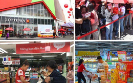 Toàn cảnh thị trường bán lẻ Việt Nam năm Kỷ Hợi