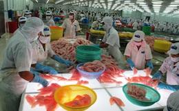 Yêu cầu đánh giá tác động đến sản xuất, xuất khẩu do dịch corona