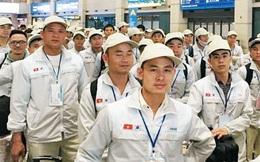 Lao động bất hợp pháp có cơ hội trở lại làm việc tại Hàn Quốc