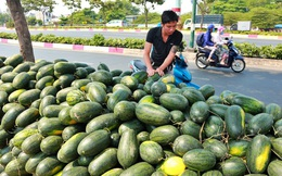 Chủ tịch Thaco: Đừng nói thái quá việc 'giải cứu'