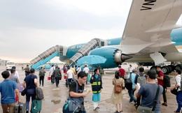 Các hãng hàng không Việt Nam đồng loạt giảm khai thác đường bay Hàn Quốc