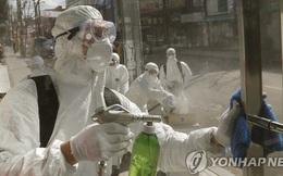 Hơn 2000 người nhiễm virus corona tại Hàn Quốc: Xác nhận 256 ca nhiễm mới, hơn 50% liên quan đến giáo phái Shincheonji