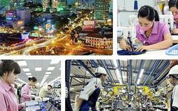 Tổng điều tra kinh tế năm 2021