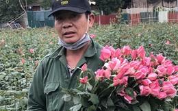 """Làng hoa lớn nhất Hà Nội ủ rũ vì Covid-19: """"Chắc phải bán đất để bù lỗ"""""""