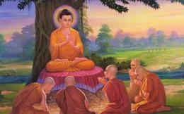 Đức Phật nói có 4 kiểu người: 2 kiểu hướng đến chỗ sáng, 2 kiểu hướng đến chỗ tối