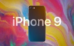 Sự kiện ra mắt iPhone 9 vào ngày 31 tháng 3 của Apple bị hủy bỏ
