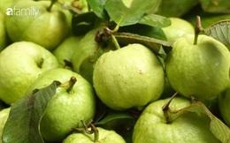 Ổi: Loại trái cây rẻ tiền nhưng lại là một trong 3 siêu thực phẩm bảo vệ sức khỏe đường ruột trong mùa dịch