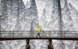 """20 bức ảnh du lịch đẹp nhất thế giới được CNN bình chọn đầu năm 2020, toàn là khoảnh khắc """"hiếm có khó tìm"""" giữa đời thực"""
