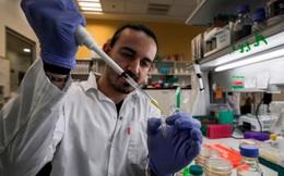 Các nhà khoa học hàng đầu đang nghiên cứu, thử nghiệm ít nhất 20 loại vắc xin chống Covid-19