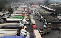 Hơn 24.000 xe hàng xuất nhập khẩu trong hơn 1 tháng, giao thương Việt Nam – Trung Quốc dần khôi phục